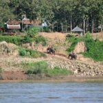 villaggio sul mekong - foto di andrea cassano