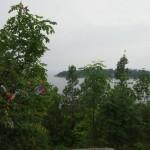 utøya, norvegia - by donato guerrini