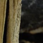 grotte di postumia - by alessandro guerrini