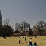 tokyo - skyline - by andrea cassano