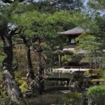 kyoto - ginkaku ji - by andrea cassano