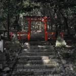 nara - tempio - by andrea cassano