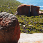 remarkable rocks - by alessandro guerrini