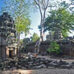 angkor - ta prohm - foto di andrea cassano